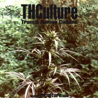 THCulture - Trance Human Culture-Trance Human Culture