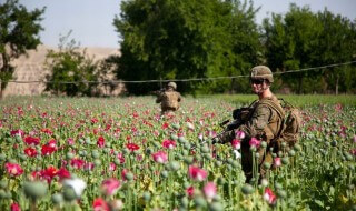 Afghanistan: It's the Heroin, Stupid